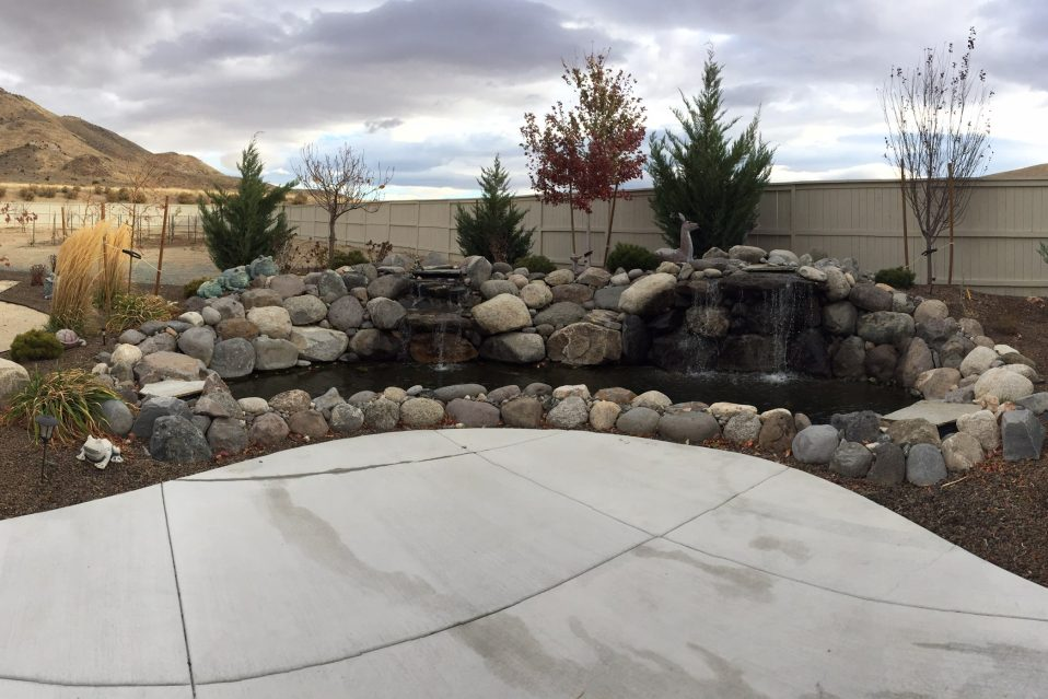 Five Questions to Ask Before You Hire a Nevada Landscape Company - Five Questions To Ask Before You Hire A Nevada Landscape Company